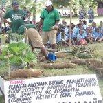 Vanuatu stress on farming skills ahead of the keyboard