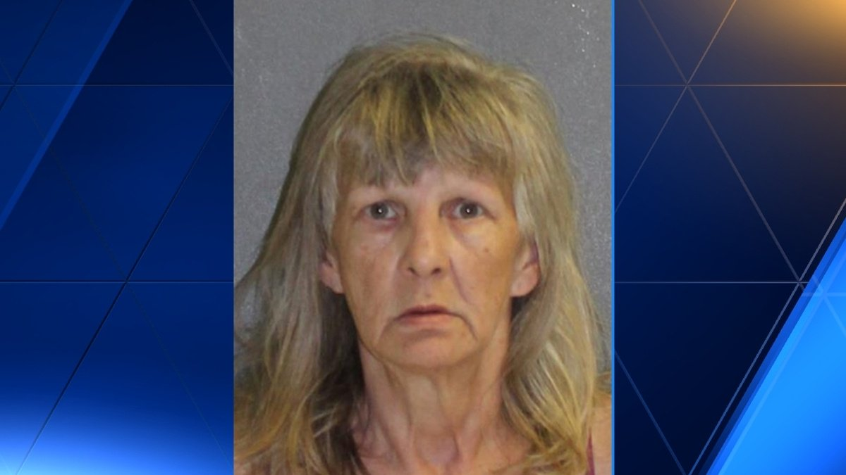 Police: Dog dies after being left in hot car in Daytona Beach, owner arrested
