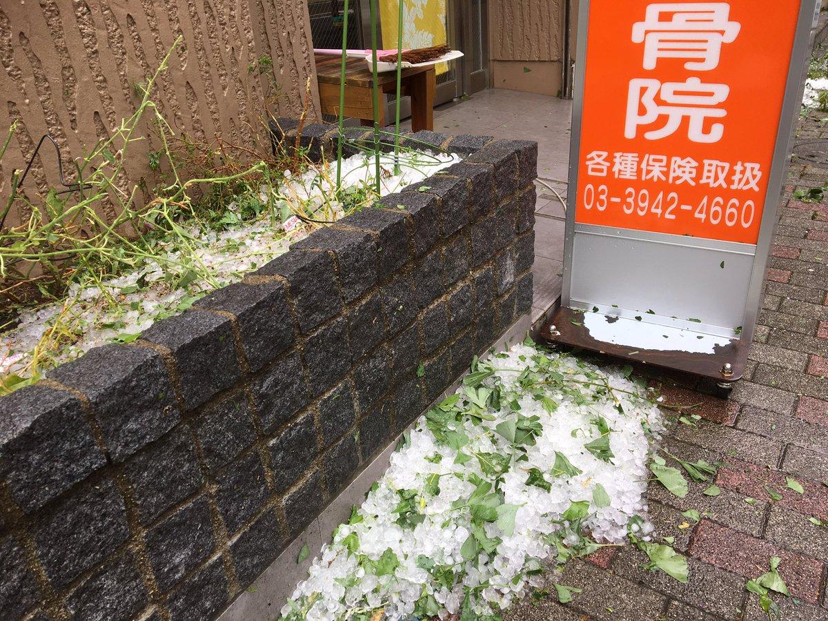 test ツイッターメディア - ハイボール何杯分できるんだ?と思えるくらいの雹が降りました。業務用の製氷機にいるような気分。もう晴れてきたけどさ。ビビりました。。。 https://t.co/h1VM91qo7k