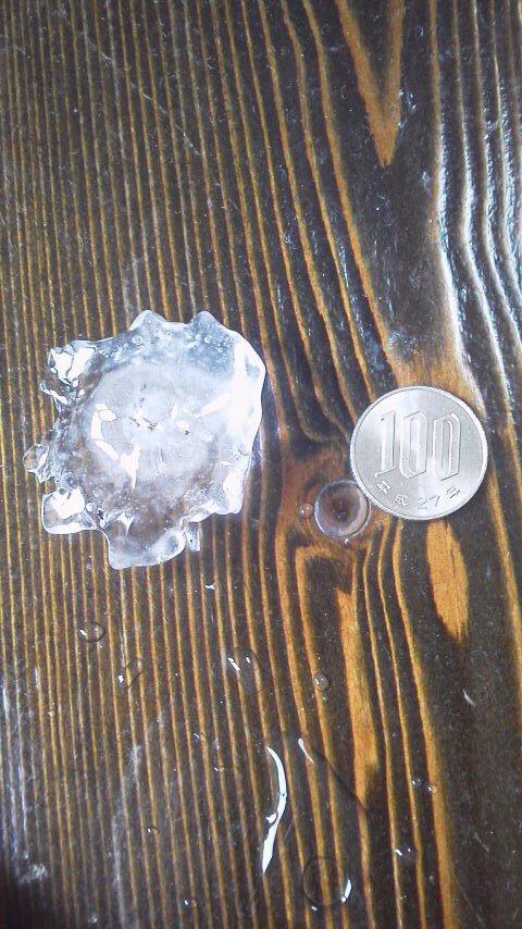test ツイッターメディア - 庭から拾ってきた。こんなサイズの雹が15分近く降っていた。ガラスにバンバン当たって怖かったよ。#谷中風景 https://t.co/RwYTt3dTGo