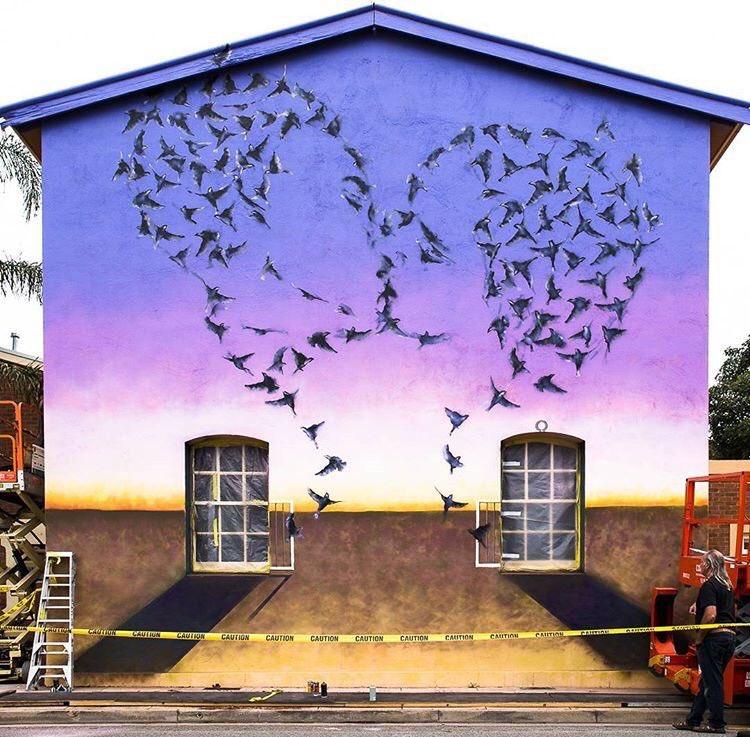#mural by JimmyC #Adelaide #Australia #streetart #art graffiti https://t.co/Z9dHS1gyWo