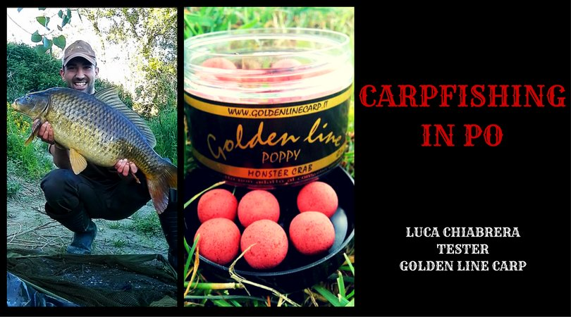 #Carpfishing in Po con @GoldenLinecarp #pesca #<b>Peche</b> #fishing #carp #carpa #pescaallacarpa ht