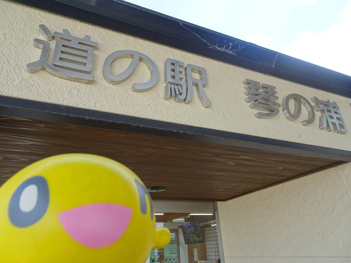 【道の駅0686】琴の浦山陰道沿いにある道の駅。情報コーナーで琴浦さんの名刺を販売していました。ことうらアゲアゲ串の一つ
