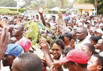Smart Harvest: Concern over lay-offs in Naivasha flower farms