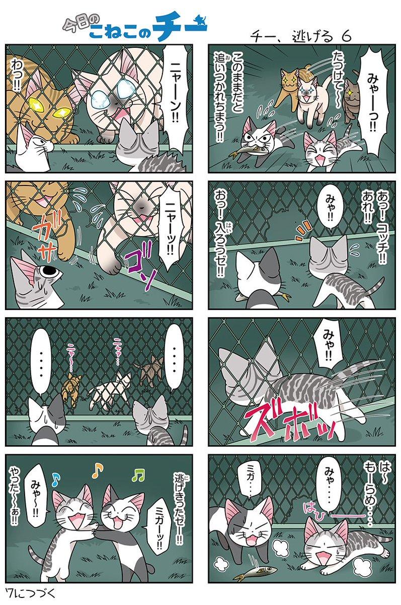 8コママンガ【今日のこねこのチー】チー、逃げる6アニメ『こねこのチー』がマンガになった!★単行本2巻7月21日発売! チ