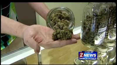 Department of Taxation Looking into Recreational Marijuana Distributor Shortage