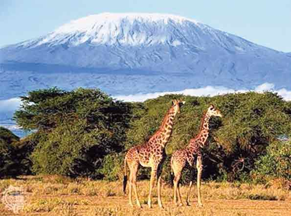 Mt Kili ice loss puzzle deepens