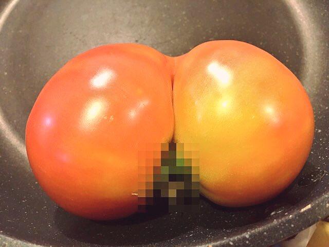 おしりみたいな形のトマトにモザイク入れたら凄い画になった