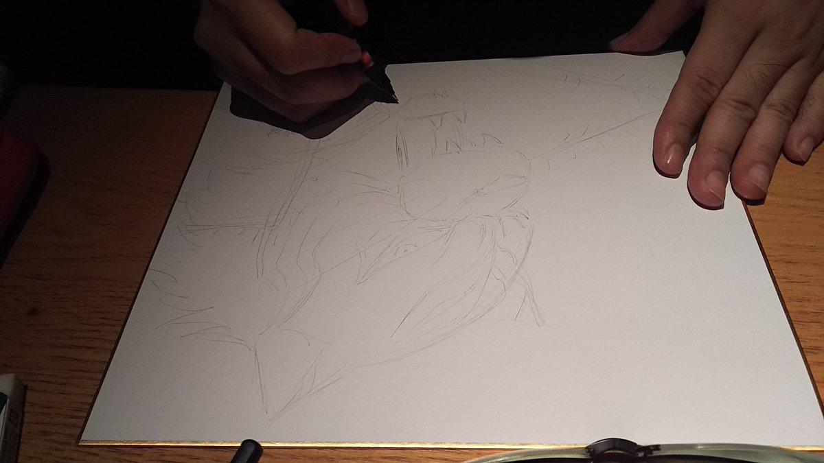 香川先生にタイガーマスクW描いていただきました‼️🐯#タイガーマスクW