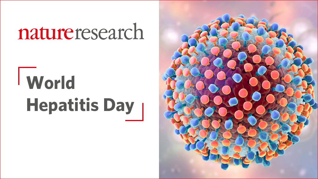 test Twitter Media - For #WorldHepatitisDay check out this great hepatitis content resource from @NatRevGastroHep & @NatureMicrobiol https://t.co/V8sBr6VgFP https://t.co/fjUQTbFidw