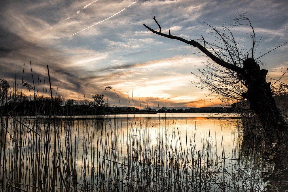 Aumento de nitrogênio vai afetar vida e qualidade das águas, diz estudo #G1