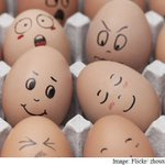 Is Your Daily Dose of Eggs Raising your cholesterol levels? Find out here