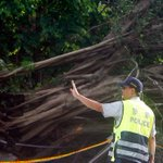 Typhoon injures 81 in Taiwan as another storm approaches