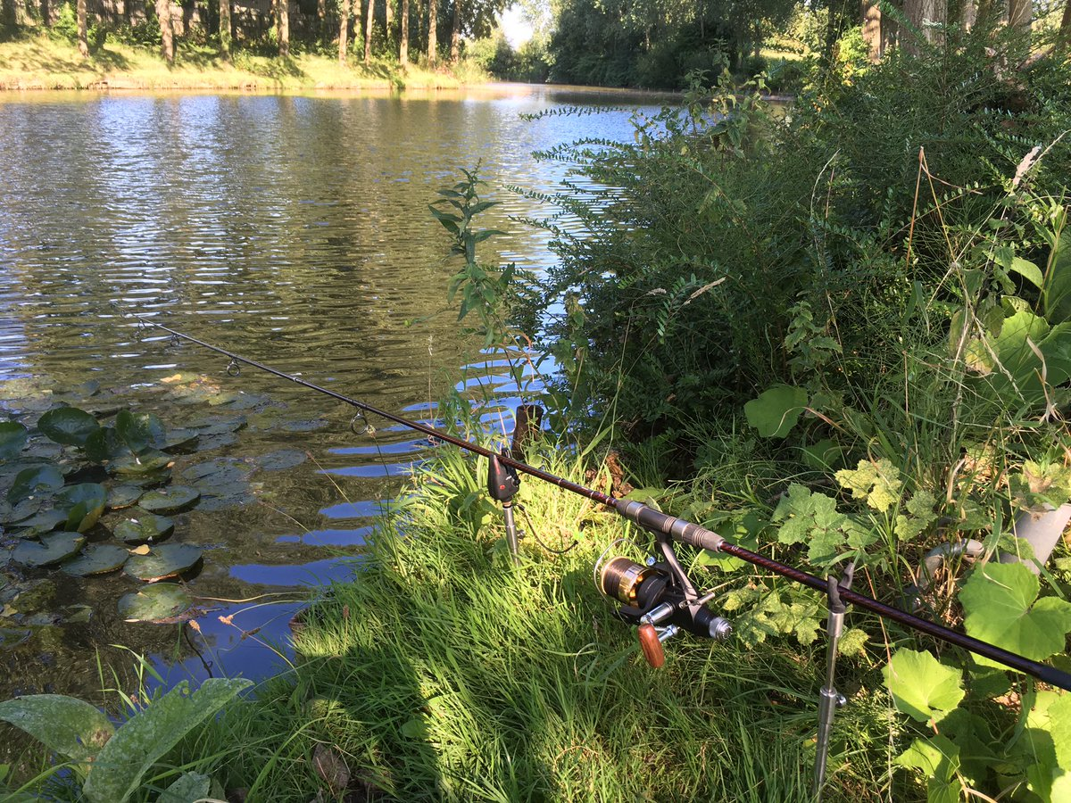Evening fishing session. #carp #carpfishing #<b>Bream</b> #<b>Bream</b>fishing #relaxing #catch #fis