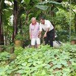 Bukit Batok seniors get programmes on health and handphone use
