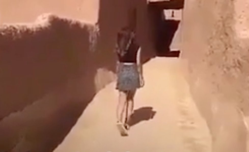 Saudi woman who wore skirt in viral video has been arrested, state television reports. https://t.co/uwDiIjrwiN https://t.co/hJUZnI6toK