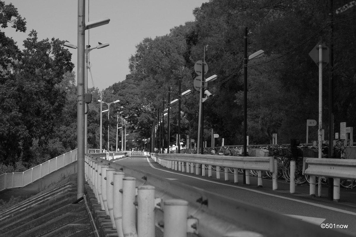『川沿いの道』#武庫川 #写真撮ってる人と繋がりたい#写真好きな人と繋がりたい#ファインダー越しの私の世界#写真 #カメ