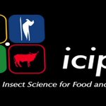 ICIPE looking to advance bee health research activities