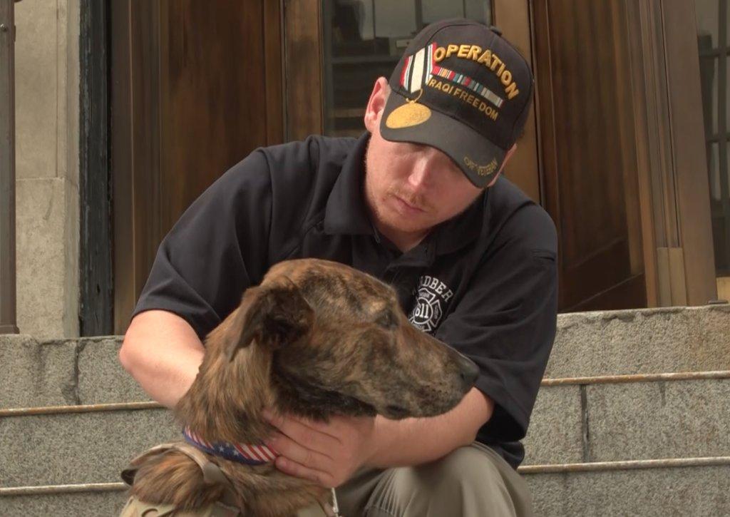Iraq War veteran and PTSD service dog form instant bond