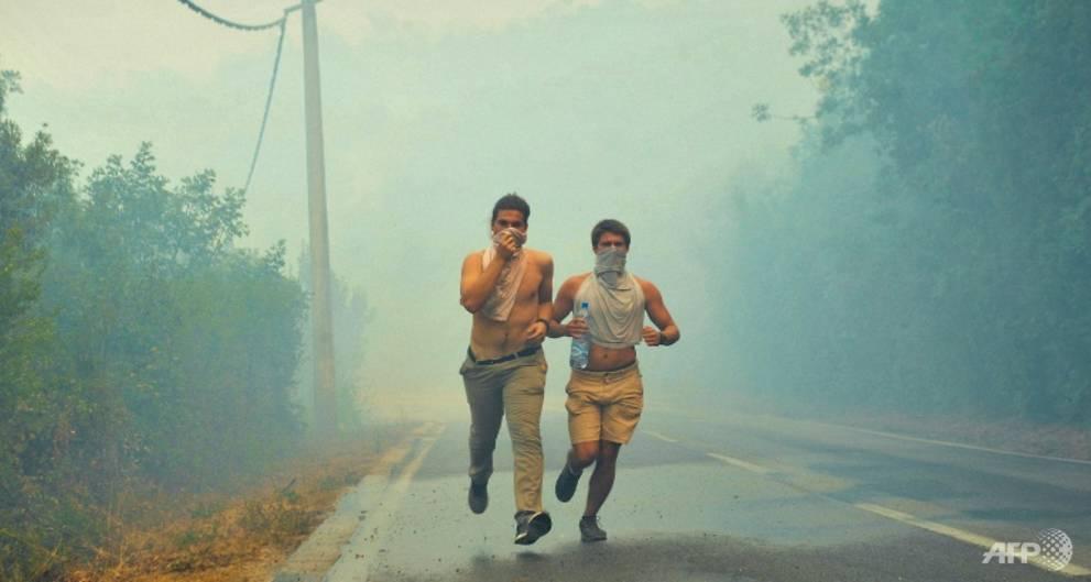 Montenegro wildfires rage but 'under control' in Croatia