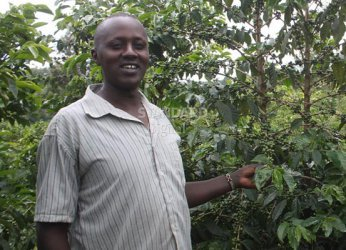 Smart Harvest: Coffee farmers struggle to recover losses