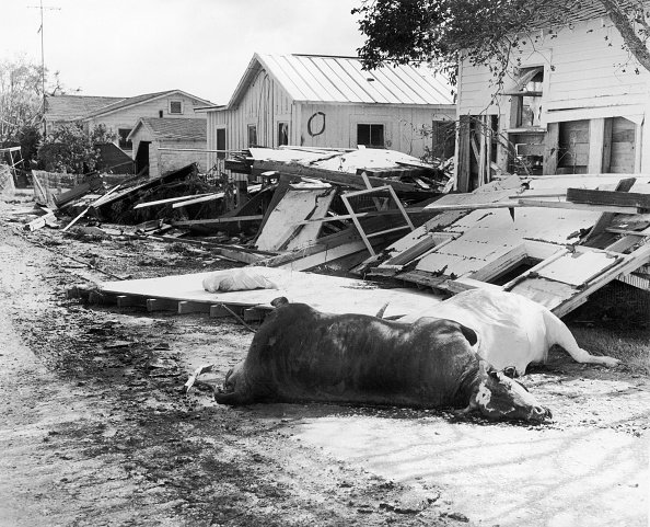 Photos: 60 years ago, Hurricane Audrey became one of the deadliest storms in US history