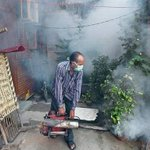 Gear up for rise in vector-borne diseases, warn city doctors