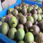 Finding market access for passion fruit farmers