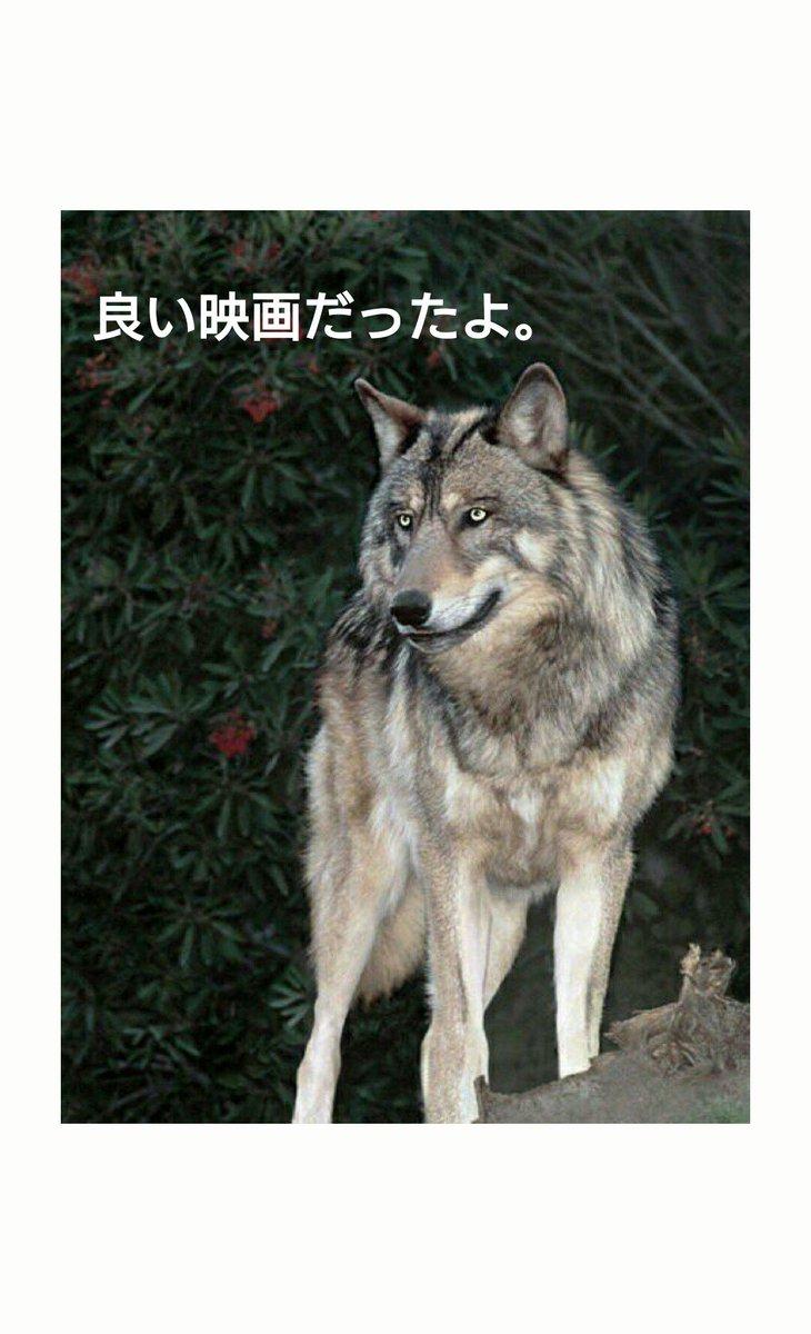 """以前 """"おおかみこどもの雨と雪"""" の映画を観た時に狼にならないようにとオマジナイの【お土産三つ、タコ三つ】   此の言葉"""