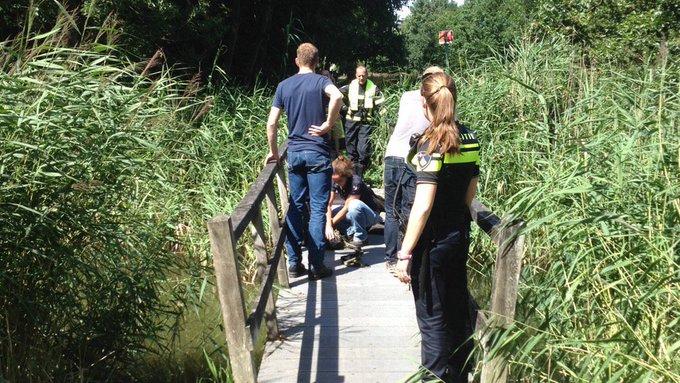 Paard uitgegleden op brug Pieter van der Sallempad Den Haag. Brandweer moet dier weer overeind krijgen. https://t.co/1PfGg85VeH