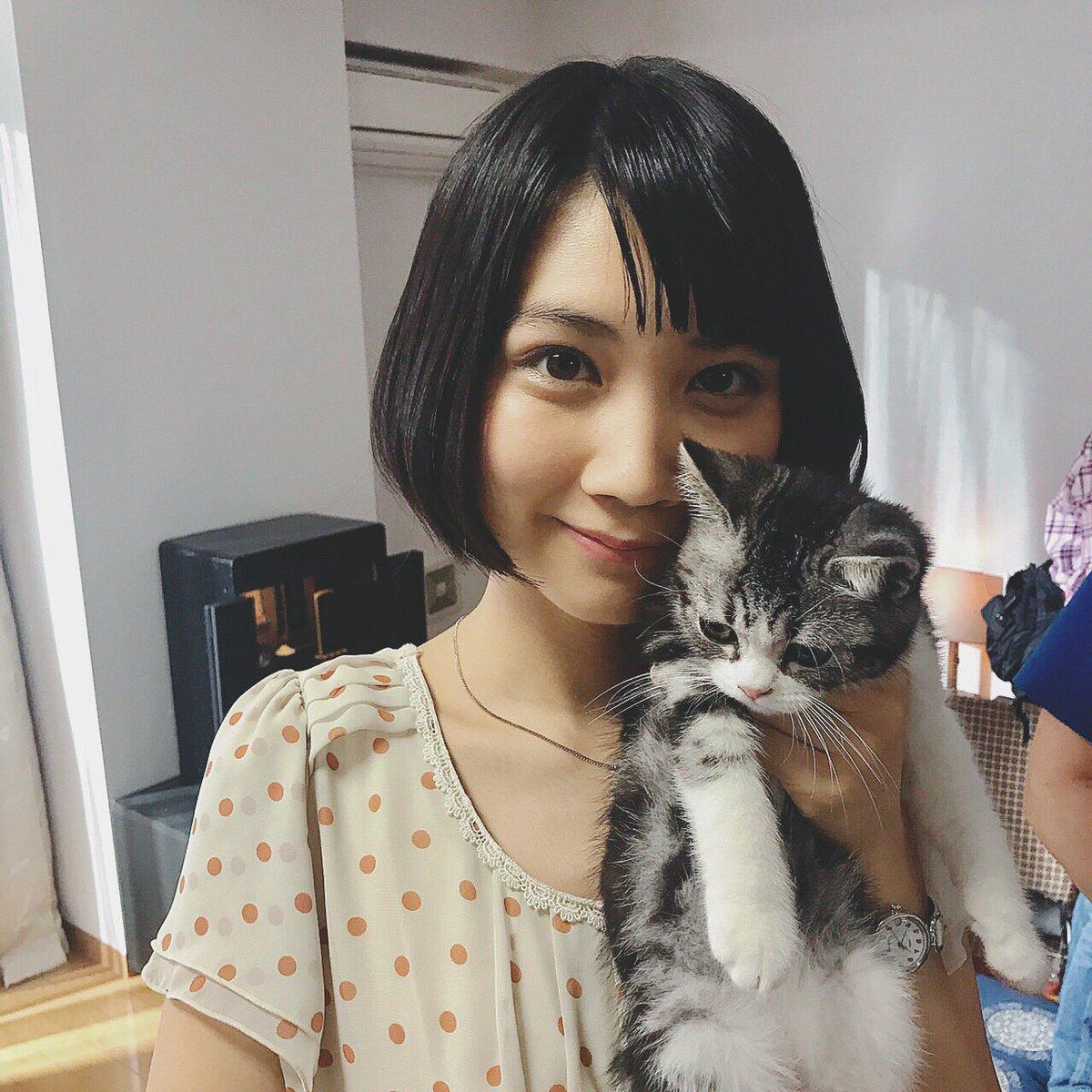 ネコを愛でる松本穂香
