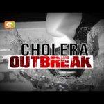 Cholera death toll hits 12