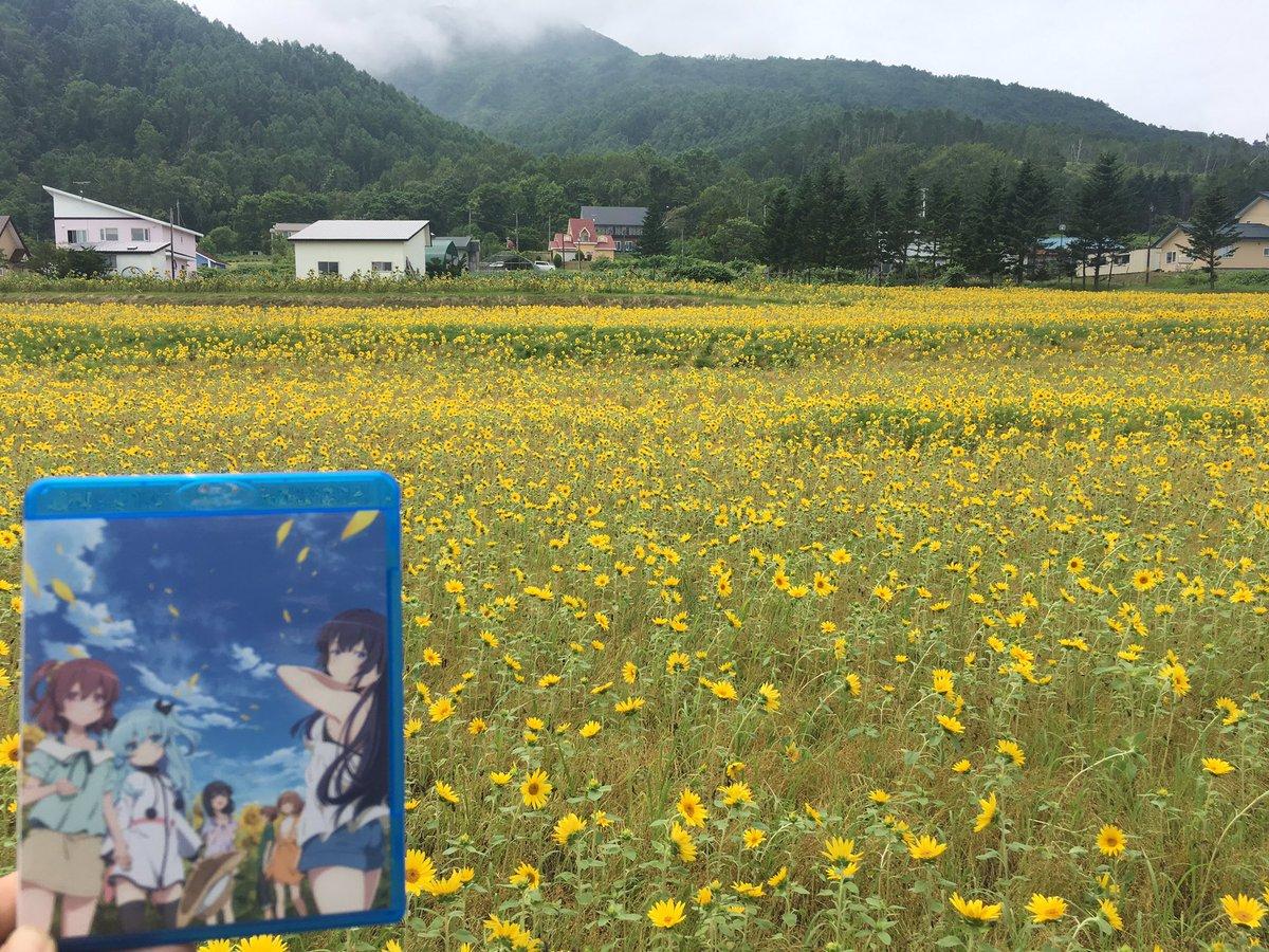 『天体のメソッド』のひまわり畑が満開です!!なお、明後日はひまわり畑🌻背景のBD最終巻が2年前に発売された日です。リアル