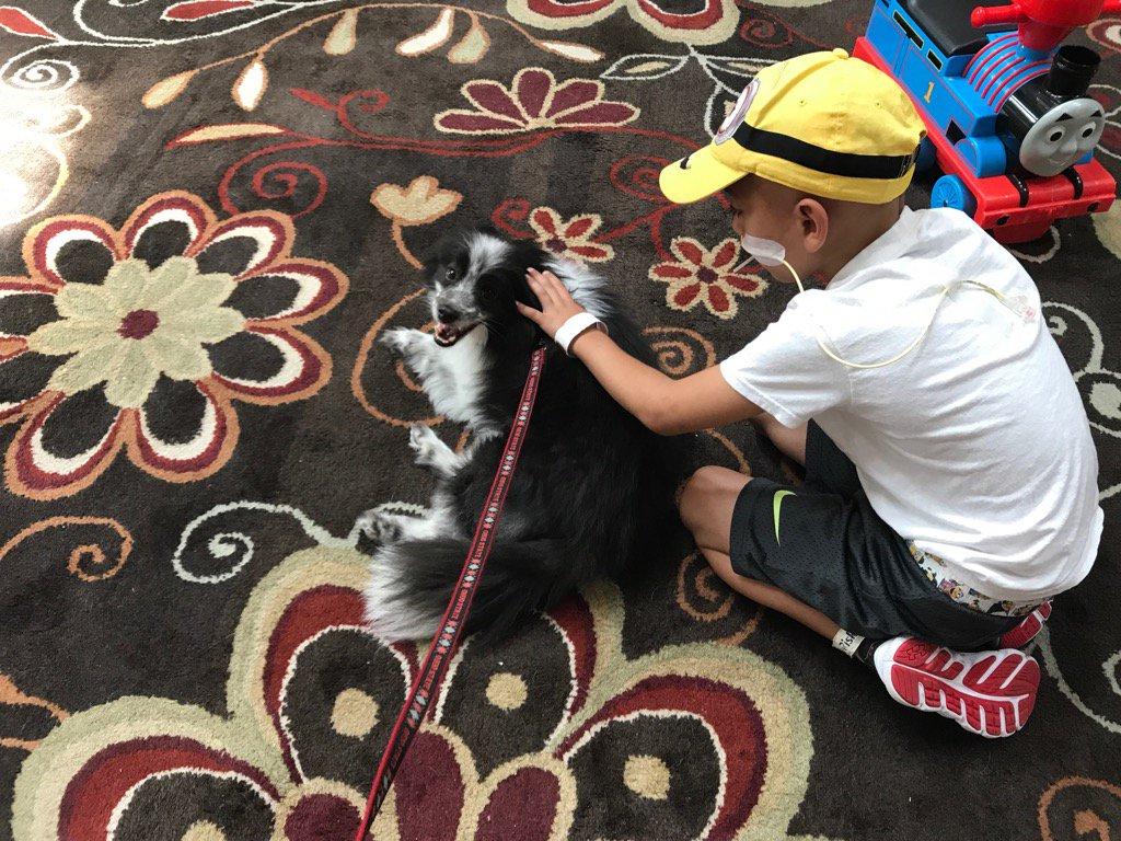 test Twitter Media - Finn loves meeting new friends @RMHCincinnati https://t.co/KfgtfebcLa
