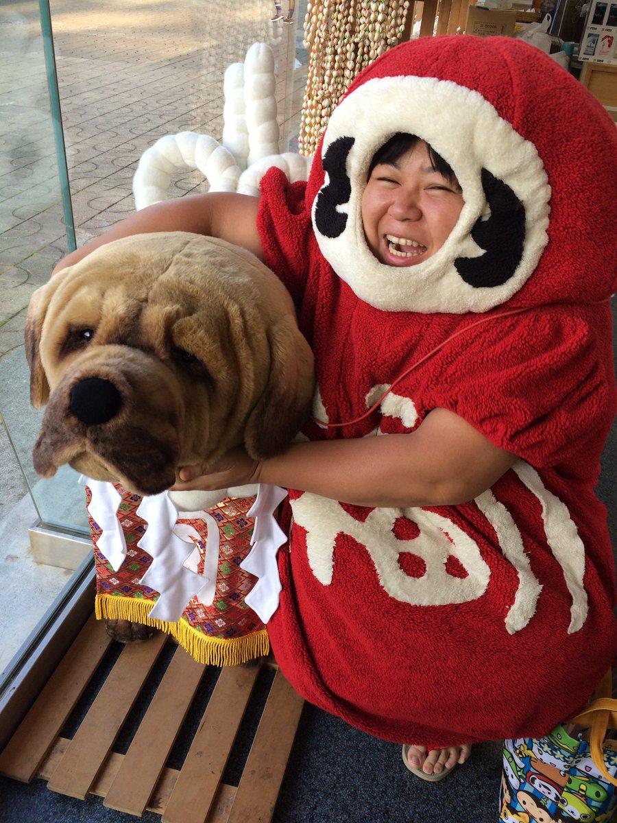 おはようございます(*´艸`*)今日も縁起の良い日でありますように。今日の縁起の良い動物は犬だよ!ヨーロッパでは今日のか