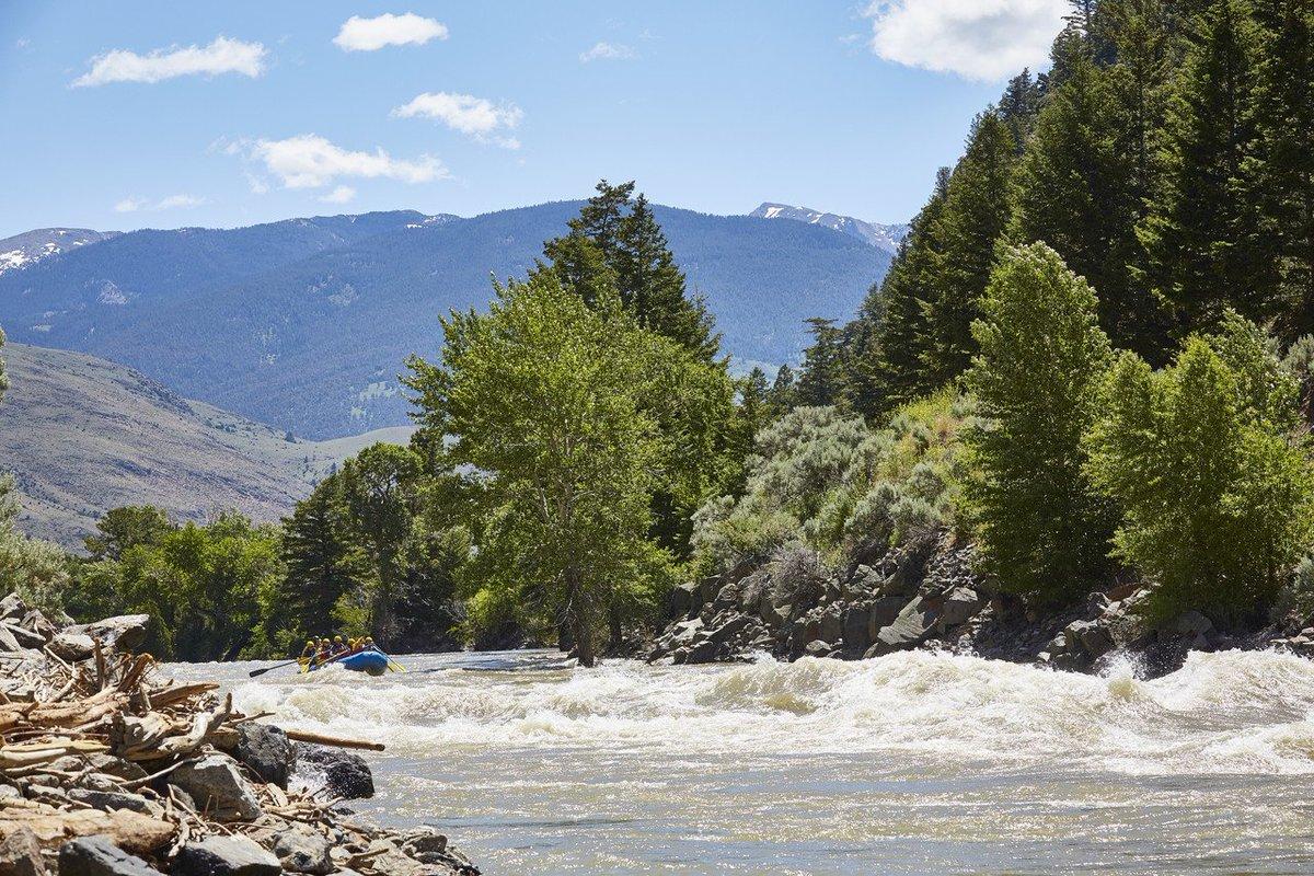 イエローストーンからグレイシャーまで、車の旅【#写真】 #Yellowstone #Glacier