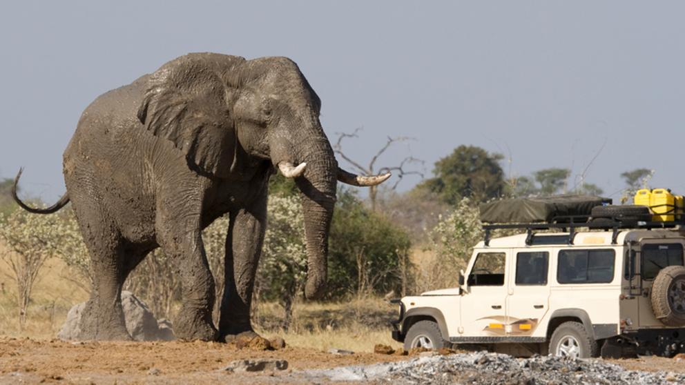 Un elefante mata a un turista español en Etiopía https://t.co/9Tu0pCbscO https://t.co/IWPmX3TUjn