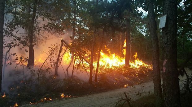 Area's largest forest fire in a decade burns for 4th day