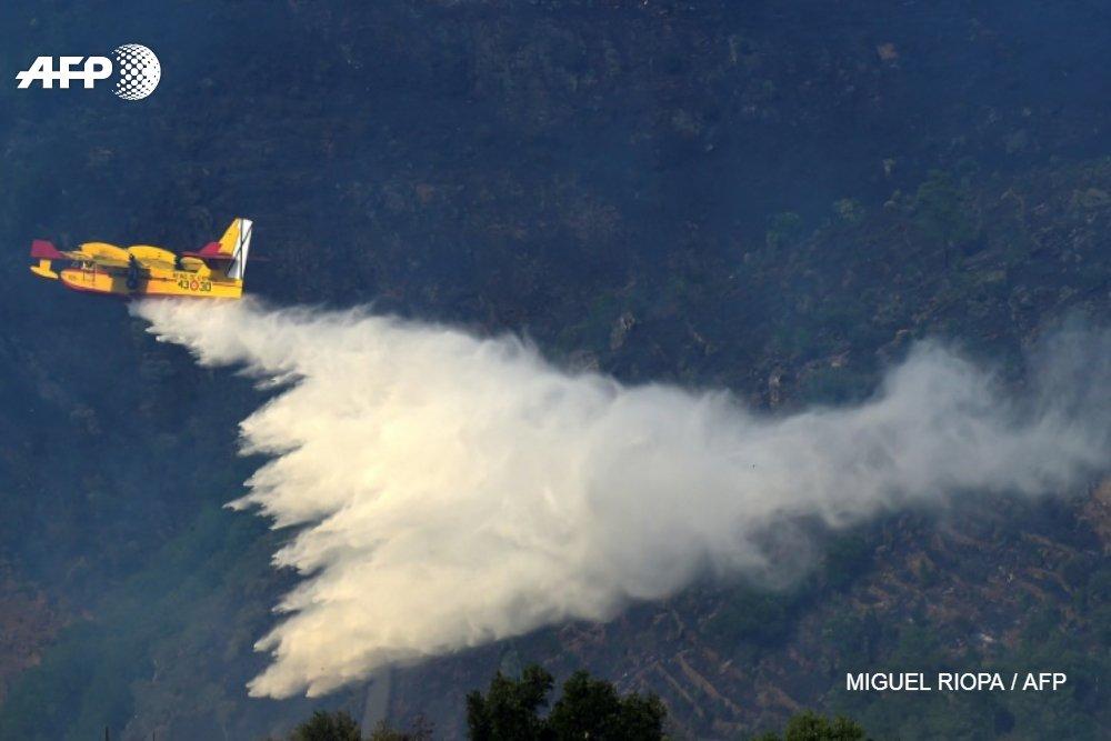 Portugal : après une courte accalmie, les feux de forêt reprennent