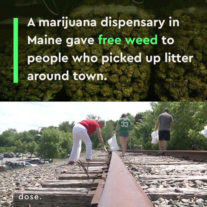 @OMGFacts: RT @dose: Best ?  municipal ?  program ?  ever. ? https://t.co/6hG14KxV8D