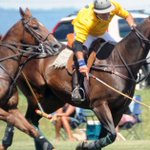 Hempt Memorial MS Polo Match returns to Silver Spring
