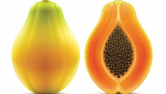 Papayas blamed for deadly salmonella outbreak