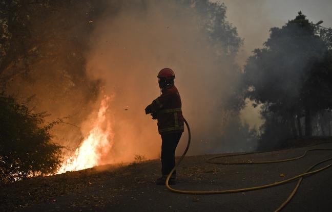 Portugal: Les feux de forêt reprennent, plus de 2.300 pompiers mobilisés