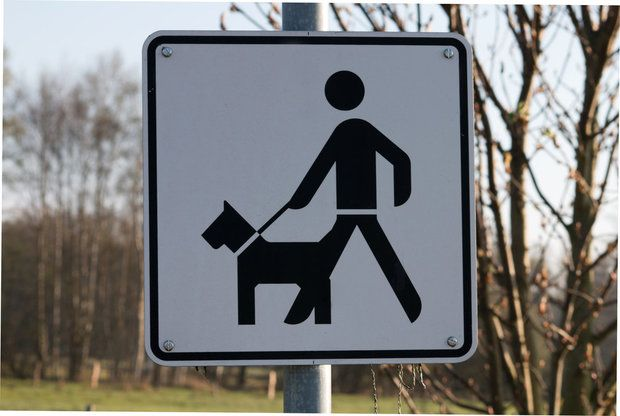 Is there a dog registered as dangerous in your neighborhood? Check our database