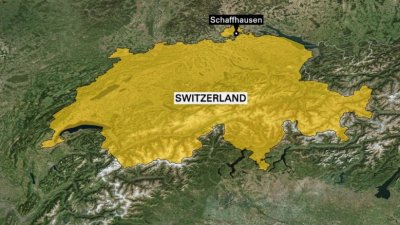 Suspect arrested in Switzerland chainsaw attack