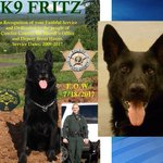 Memorial planned for Cowlitz County K9 who passed away after fighting illness