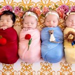 Itty-Bitty Disney Princesses Are Brought to Life in Enchanting Photo Shoot
