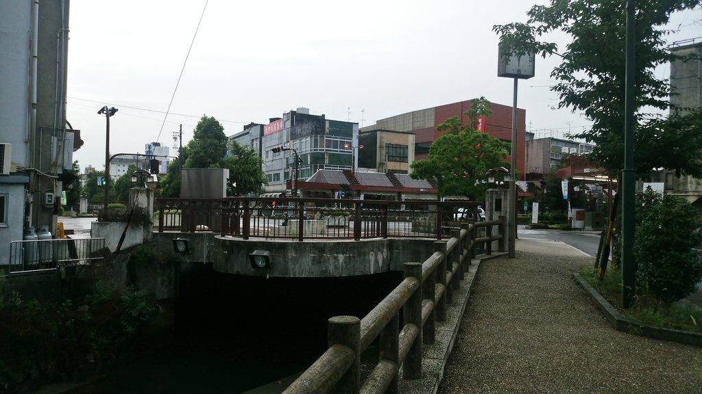 ムーンライトながらで朝に大垣着せっかくなので巡礼朝イチの美登鯉橋は静かでパンが目当てなのか真下では鯉がパクパクと・・・#