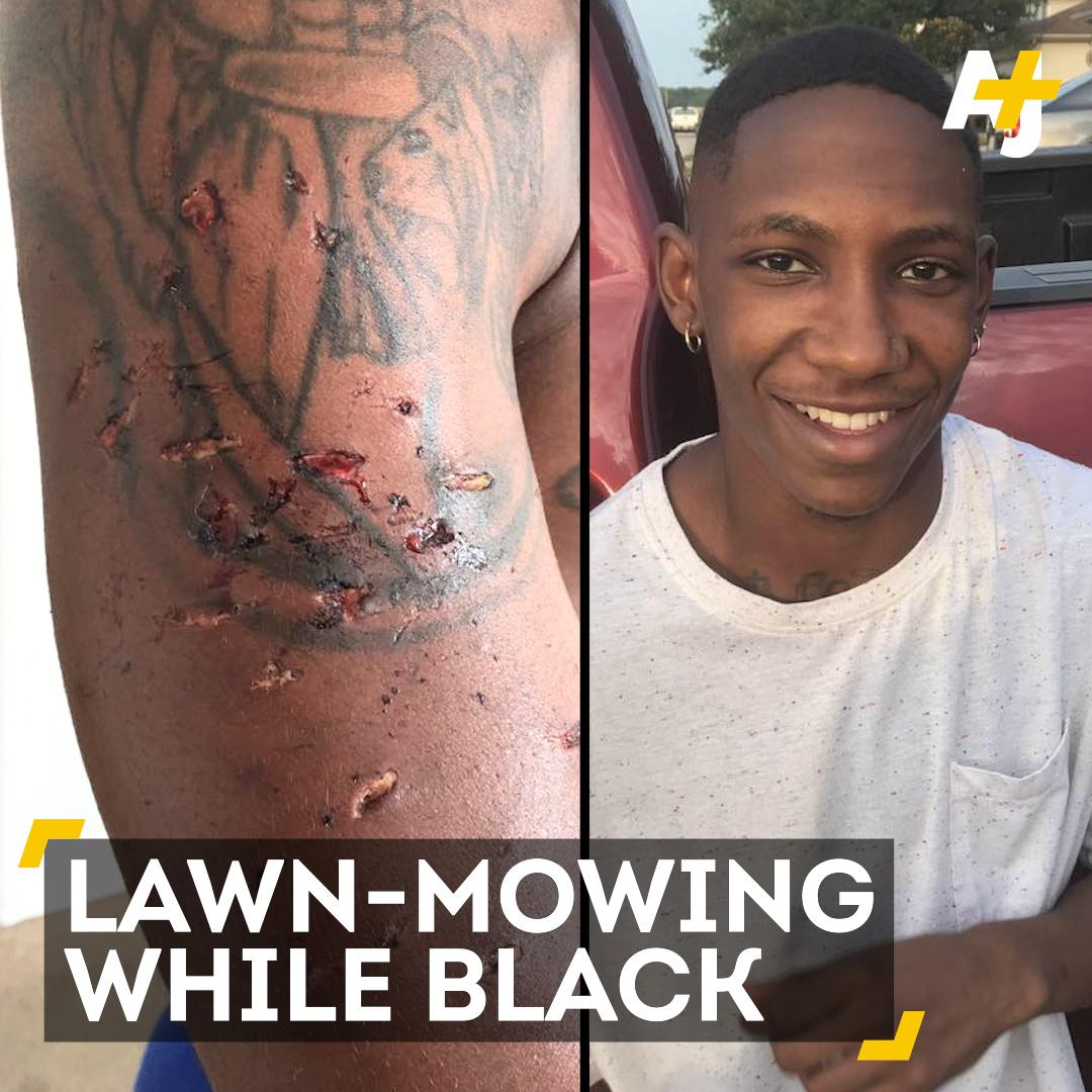 A young man was attacked with a K-9 and tasered after he was stopped by police while mowing lawns. https://t.co/mPnGUtypTl