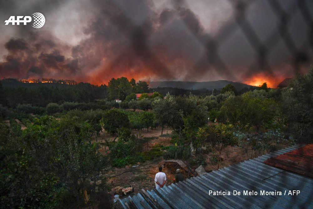Fresh forest fires rage in central Portugal, cutting off roads and forcing thousands to flee